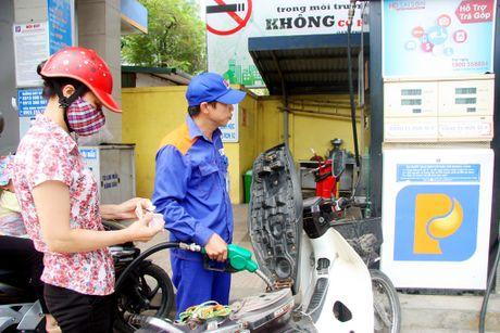 Chung loai xang dau se tang gap 3 lan vao nam 2017 - Anh 2