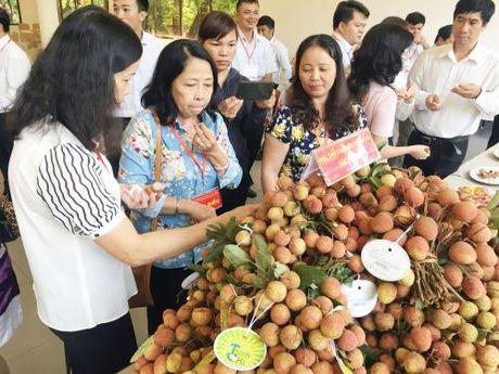 Cong nghiep thuc pham Viet Nam- Bai 2: Chon loi nao de tao dung thuong hieu? - Anh 2