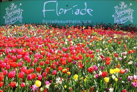 Thang 10 den voi Le hoi hoa Floriade - Anh 1