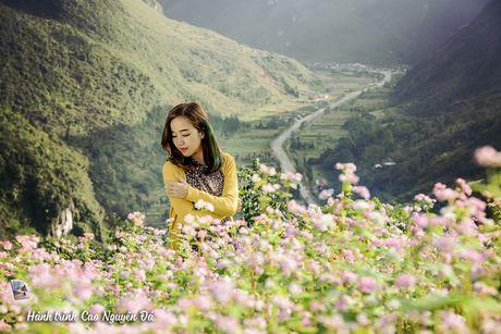 10 dieu khong nen bo lo khi du lich bui Ha Giang - Anh 8