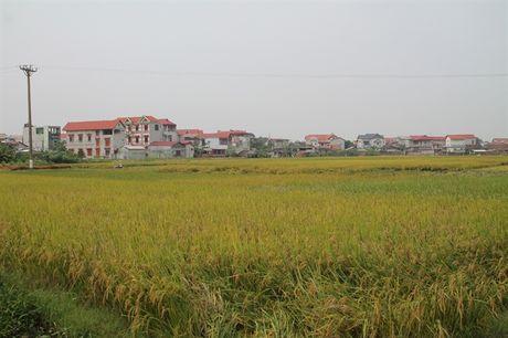 Ung ho tren 1 ty dong va 7.814m2 dat nong nghiep - Anh 2