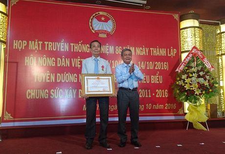 Chu tich nuoc tang Huan chuong Lao dong cho ong gia lam ruong - Anh 1