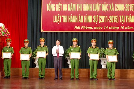 Hai Phong tong ket 8 nam thi hanh Luat Dac xa - Anh 1