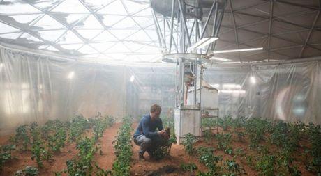 NASA len ke hoach trong rau xanh tren sao Hoa - Anh 1
