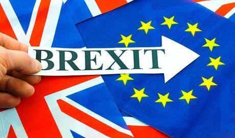 Anh phai tra 20 ty Euro 'chi phi ly hon' cho EU - Anh 1