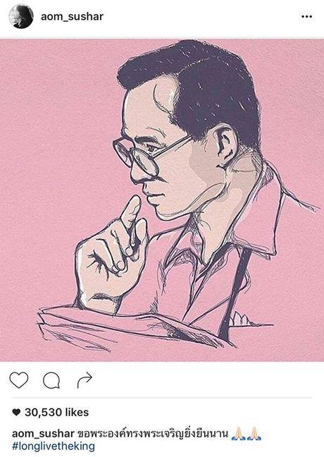 Sao Thai nghen ngao vinh biet Quoc vuong Bhumibol Adulyadej - Anh 14