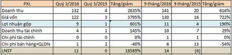 PVC-Idico (PXL): Phat sinh doanh thu tu bat dong san, quy 3 lai lon nhat trong vong 5 nam - Anh 2