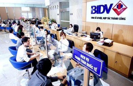 Nhieu van de cap bach can xu ly tai DHDCD bat thuong cua BIDV - Anh 1