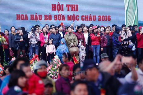 Gan 1 ty dong tien thuong cho Hoa hau bo sua Moc Chau 2016 - Anh 2