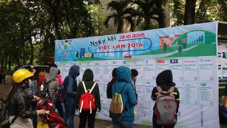 Ngay hoi viec lam Truong Dai hoc Nong Lam TPHCM 2016 - Anh 3