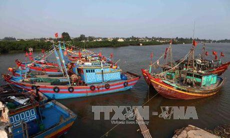 Thai Binh nghiem cam tau, thuyen ra khoi - Anh 1