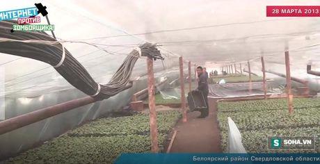 Chan dong: Rau qua Trung Quoc dau doc hang tram tre em Nga - Anh 2