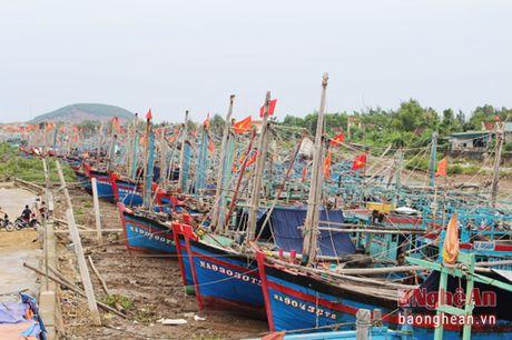 Cac dia phuong chu dong phuong an ung pho voi con bao so 7 - Anh 2