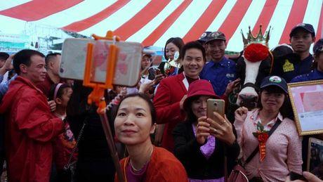 Chen chuc tao dang selfie cung 'hoa hau' nang hang ta - Anh 7