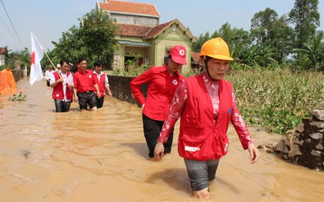 Hoi Chu thap do Viet Nam cuu tro khan cap cho 4 tinh mien Trung - Anh 1