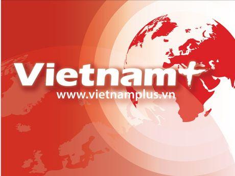 Chinh phu chat van Long An ve nan buon lau thuoc la cong khai - Anh 1