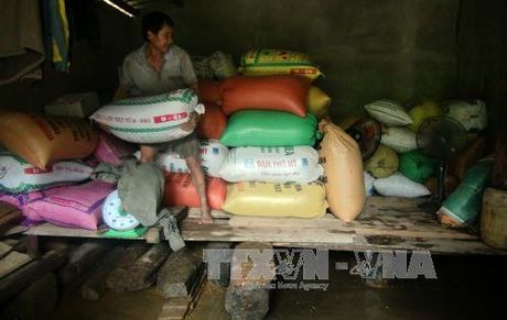 Quang Tri thiet hai nang ne trong dot mua lu va loc xoay - Anh 1