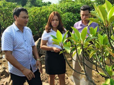 Nu doanh nhan Le Thi Them va cau chuyen quang ba thuong hieu Quang Ninh - Anh 3