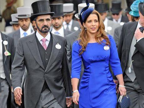 Vua Dubai dieu may bay rieng cho 250.000 bang Anh do tiep te sang Haiti sau con bao 'mat quy' - Anh 2