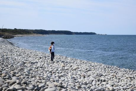 Tottori - thanh pho tai dinh cu voi moi truong song tot nhat Nhat Ban - Anh 3