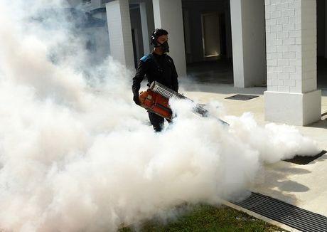 Singapore thong bao da dap tat duoc o dich Zika lon nhat - Anh 1