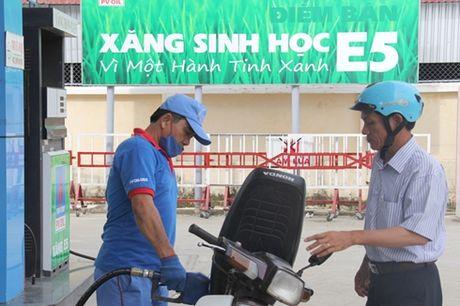 Chuyen doi su dung xang sinh hoc E5 tai cac don vi hanh chinh su nghiep - Anh 1