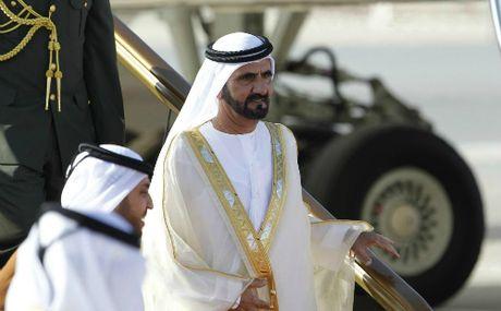 Vua Dubai dieu may bay rieng cho 450.000 USD hang cuu tro bao cho Haiti - Anh 2