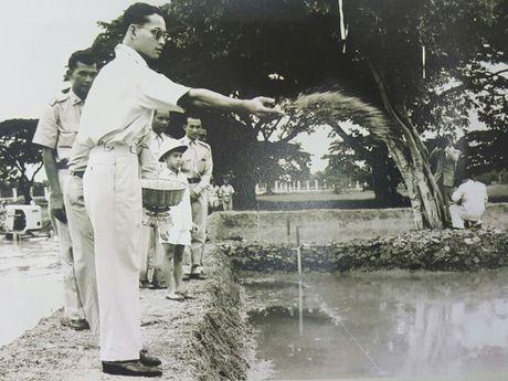 Nhung cau chuyen ve nha vua Thai Lan Bhumibol Adulyadej: Thay troi lam mua - Anh 1