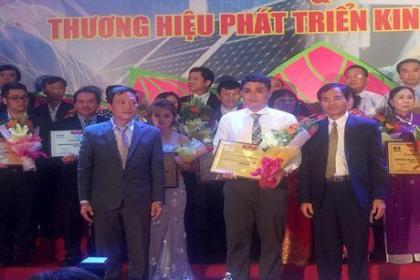 Vinh danh 80 doanh nhan Viet Nam tieu bieu, xuat sac nam 2016 - Anh 1