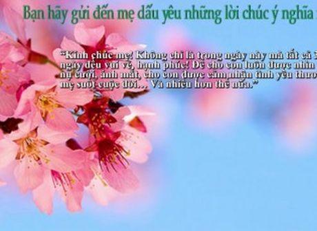 Nhung loi chuc 20/10 hay va y nghia nhat gui tang me - Anh 2