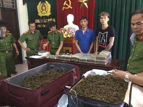 Loi dung mua lu, 2 doi tuong van chuyen 32 kg ma tuy tu Lao ve VN - Anh 1