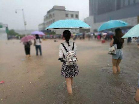 TP HCM - diem du lich song chung voi lu - Anh 4