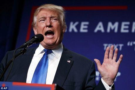 Tong thong Obama keu goi Donald Trump thoi phan nan ve gian lan bau cu - Anh 1