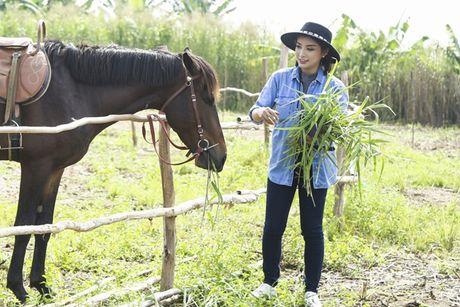 Tieu Chau Nhu Quynh nga ngua, tray xuoc chan tay - Anh 2