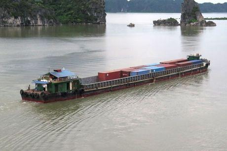 Van tai container bang duong thuy chua xung tiem nang - Anh 1