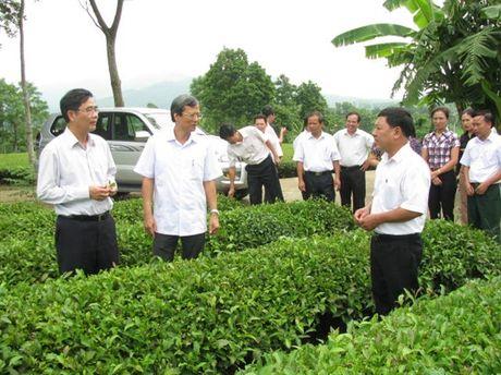 Lien ket doc dao o Cong ty che My Lam: Nong dan khong mat dat, duoc tra luong - Anh 1
