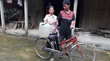 Ha Tinh: Loc Yen tan hoang sau mua lu - Anh 7