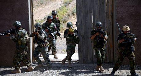 70 người thiệt mạng trong chiến dịch chống khủng bố ở Afghanistan