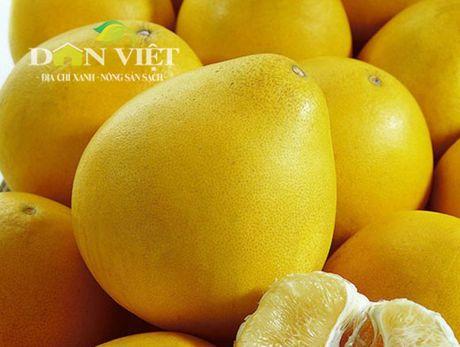 Bưởi 'vàng óng, bóng mượt' trồng ở Việt Nam giá trên trăm nghìn